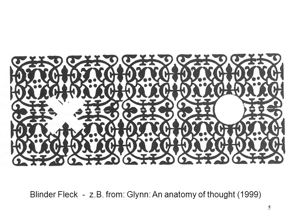 5 Blinder Fleck - z.B. from: Glynn: An anatomy of thought (1999)