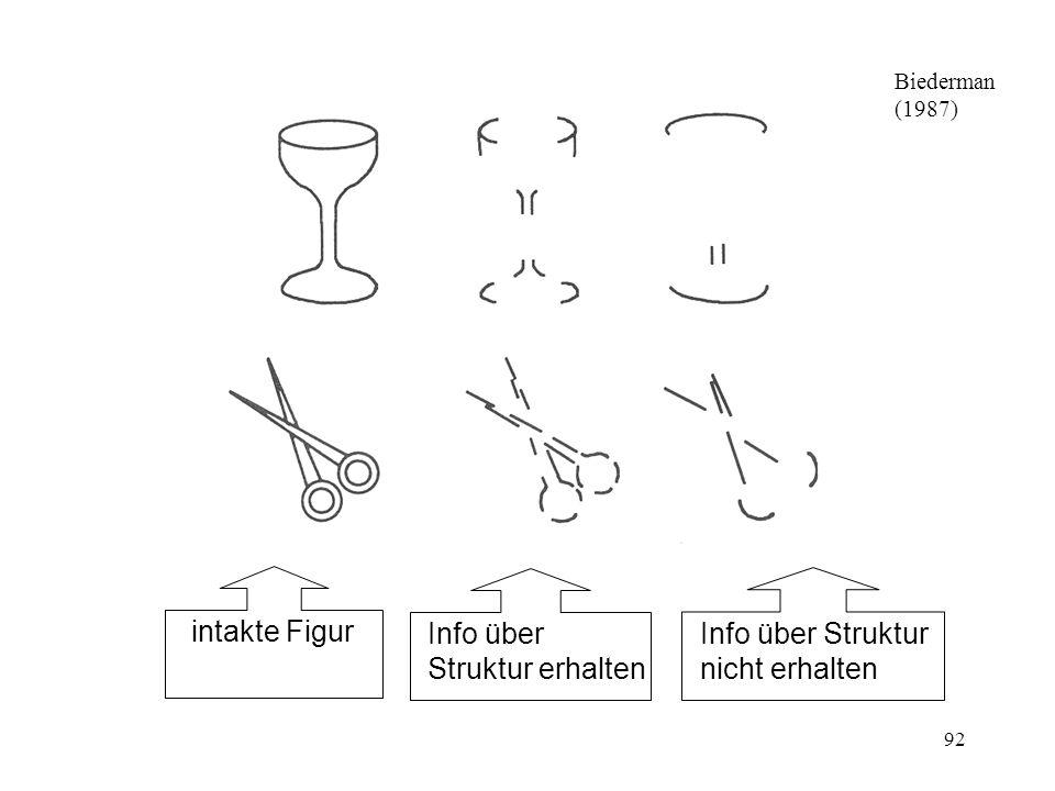 93 Hauptproblem der Theorien von Marr und Biederman: Behandeln relativ einfache/grobe Erkennungsaufgaben (z.B.: Hund oder Kuh), nicht differenzierte Unterscheidungen (z.B.: bestimmter Schäferhund Rex) Rolle anderer Hinweisreize (ausser den Kanten) noch zu wenig untersucht (z.B.