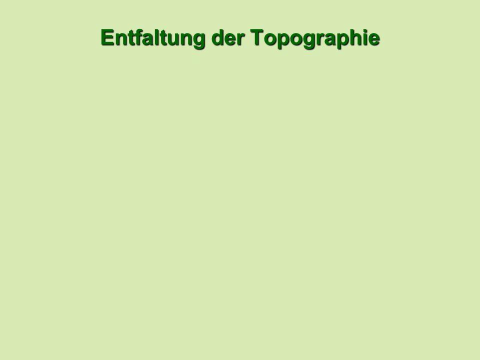 Entfaltung der Topographie