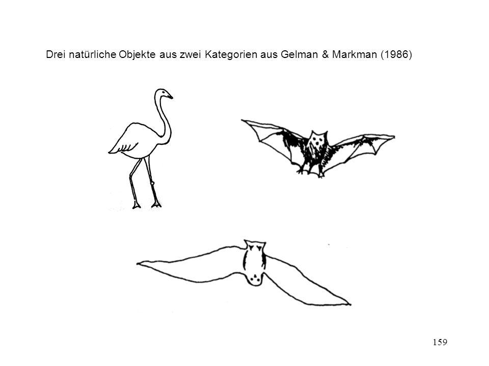159 Drei natürliche Objekte aus zwei Kategorien aus Gelman & Markman (1986)