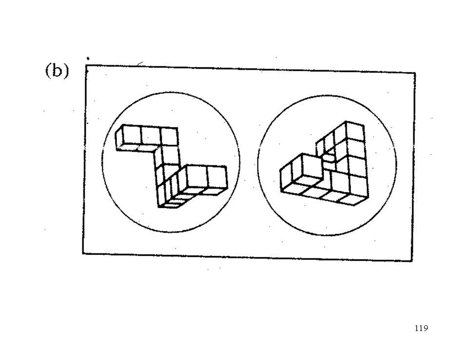 130 Bildfiles enthalten Koordinaten der Bildpunkte im räumlichen Medium, für ganze Objekte oder Teile von Objekten Skeletal images: Grundform eines Objektes (viele Details fehlen) propositionale Files enthalten Eigenschaften (z.B.: hat Flügel, hat Füsse) sowie Beziehungen zwischen diesen Eigenschaften und zentralem Teil des Objektes (z.B.