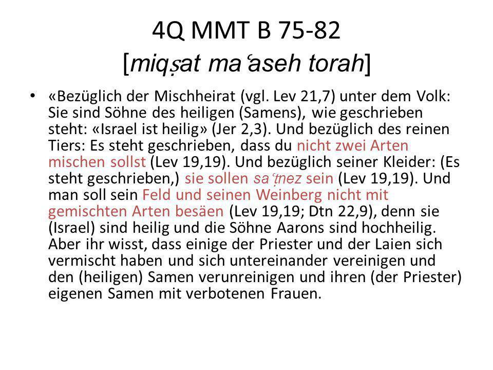 4Q MMT B 75-82 [ miq at ma ʿ aseh torah] «Bezüglich der Mischheirat (vgl. Lev 21,7) unter dem Volk: Sie sind Söhne des heiligen (Samens), wie geschrie