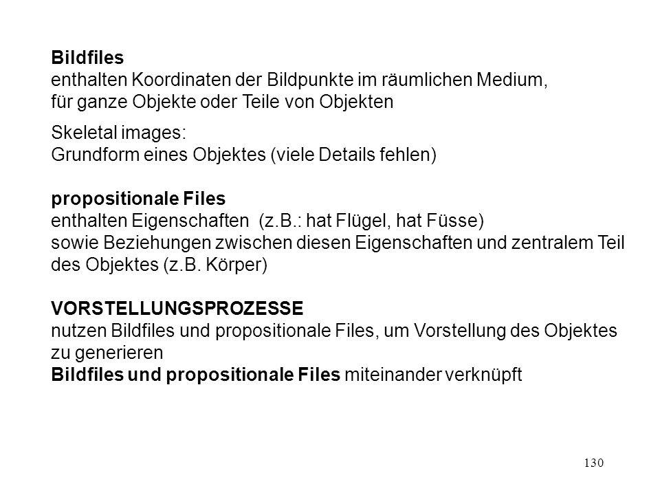 130 Bildfiles enthalten Koordinaten der Bildpunkte im räumlichen Medium, für ganze Objekte oder Teile von Objekten Skeletal images: Grundform eines Ob