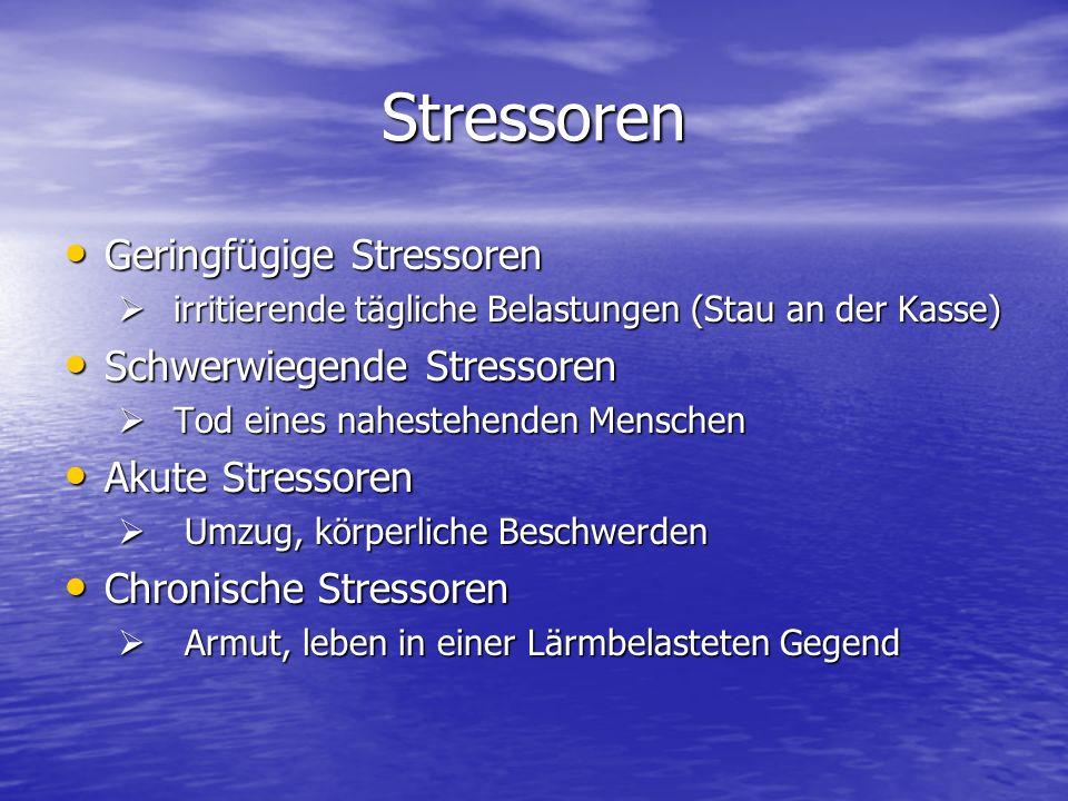Stressoren Geringfügige Stressoren Geringfügige Stressoren irritierende tägliche Belastungen (Stau an der Kasse) irritierende tägliche Belastungen (St