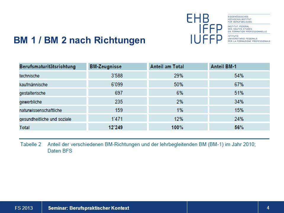 FS 2013 4 Seminar: Berufspraktischer Kontext BM 1 / BM 2 nach Richtungen