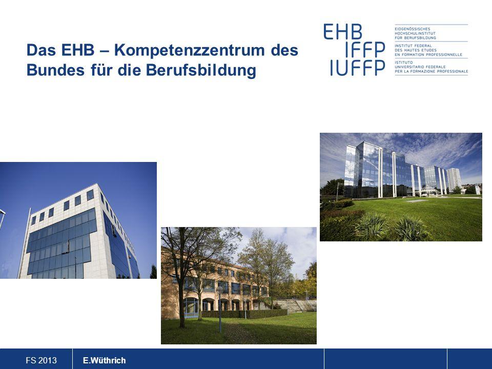 FS 2013 E. Wüthrich