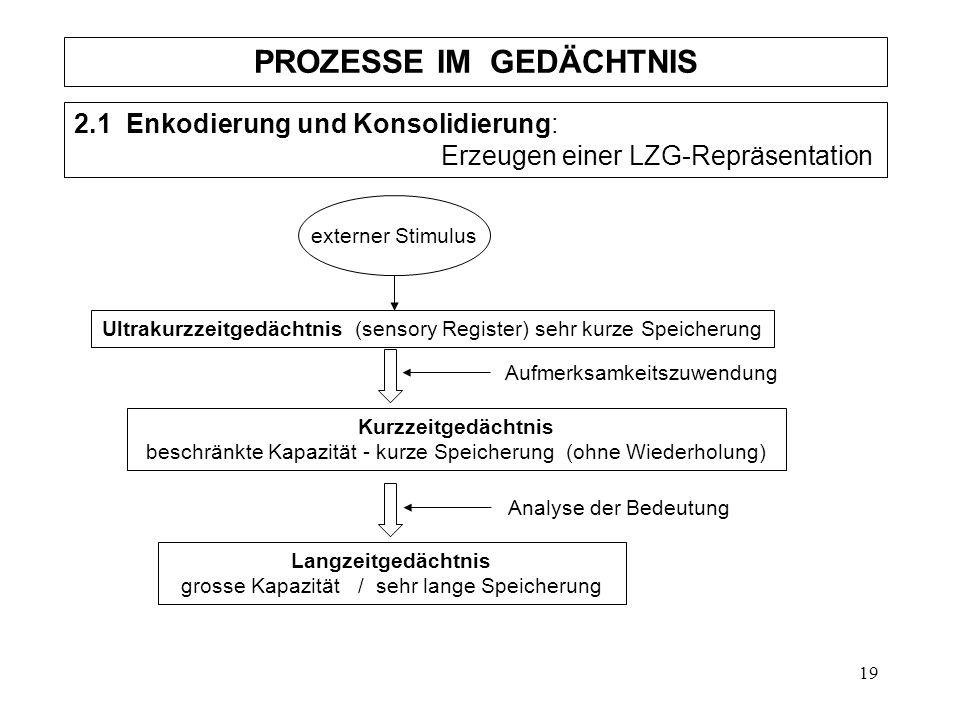 19 PROZESSE IM GEDÄCHTNIS 2.1 Enkodierung und Konsolidierung: Erzeugen einer LZG-Repräsentation externer Stimulus Ultrakurzzeitgedächtnis (sensory Reg