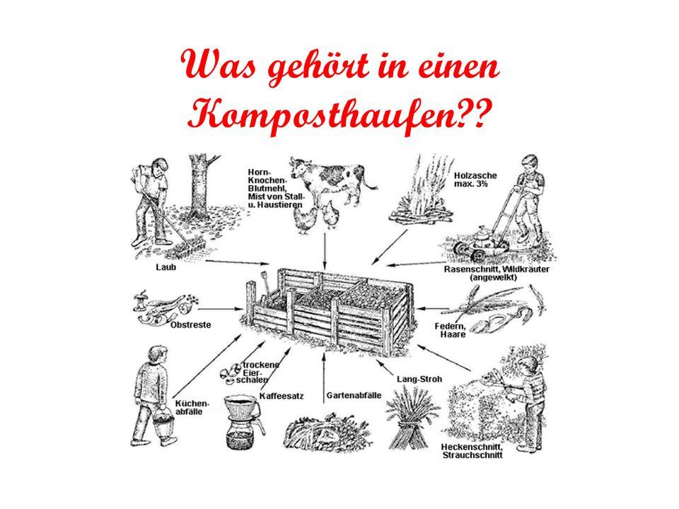Was gehört in einen Komposthaufen??
