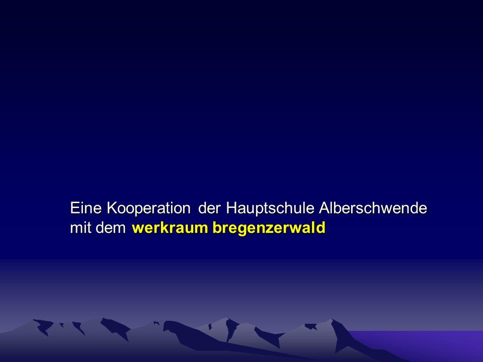 Berufsorientierungswoche HS Alberschwende Betrieb Elektro Willi Andelsbuch Werkstück / Tätigkeit Dreifachsteckdose Schalttafel