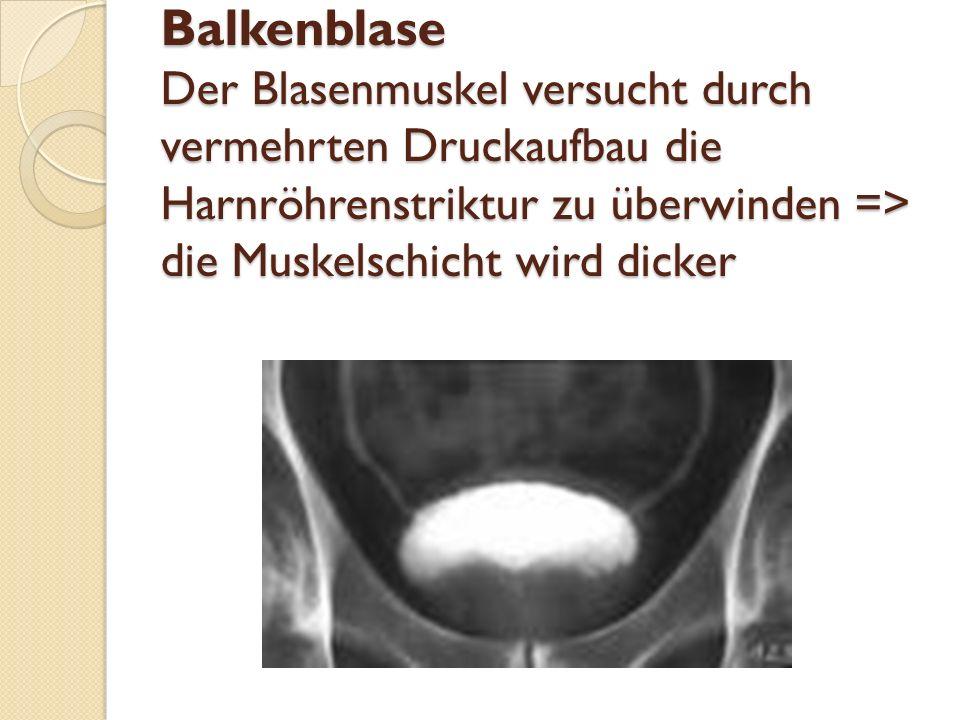 Komplikationen Restharn => rezidivierende HWI Balkenblase => Blasendivertikel + Blasensteine + bei Nierenrückstau: chronische Niereninsuffizienz Akute