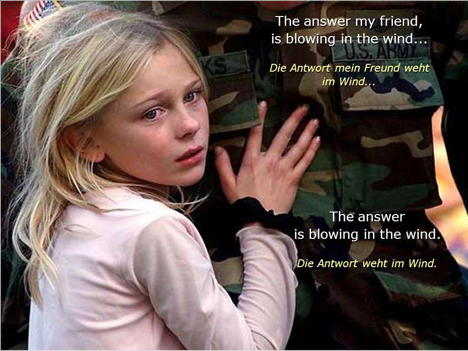 The answer my friend, is blowing in the wind...Die Antwort mein Freund weht im Wind...