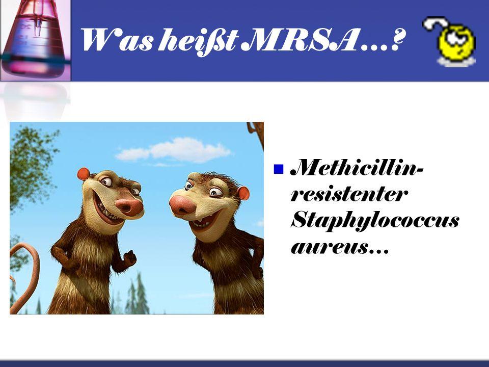 MRSA …ein gefährlicher Wundkeim… …der sogar töten kann!