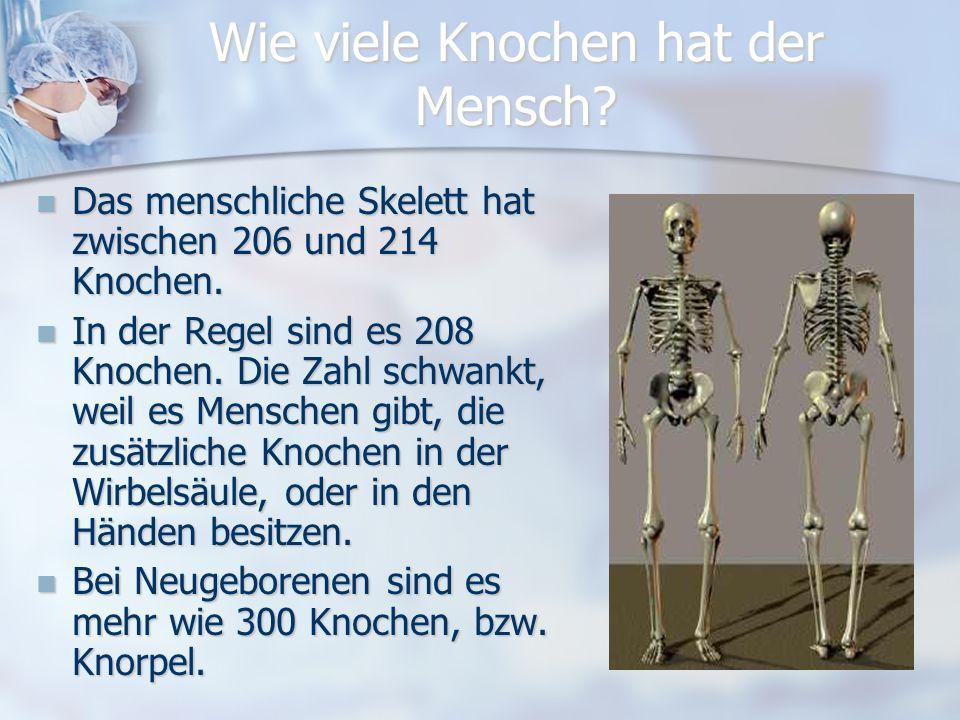 Wie viele Knochen hat der Mensch.Das menschliche Skelett hat zwischen 206 und 214 Knochen.