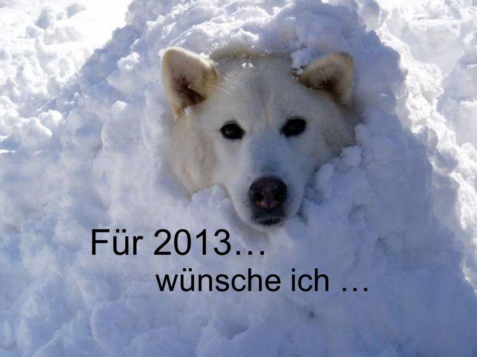Für 2013… wünsche ich …