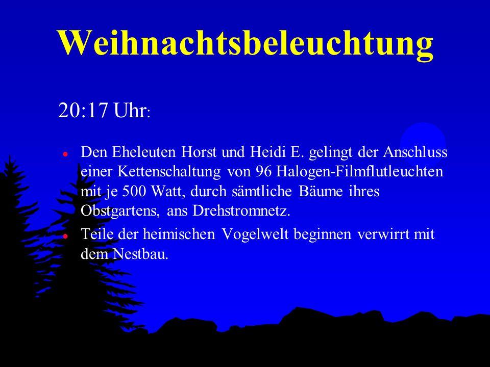 Weihnachtsbeleuchtung l Im 34 km entfernten Kernkraftwerk Krümmel registriert der wachhabende Ingenieur irrtümlich einen Defekt der Strommessgeräte für den Bereich Havighorst, ist aber zunächst arglos.