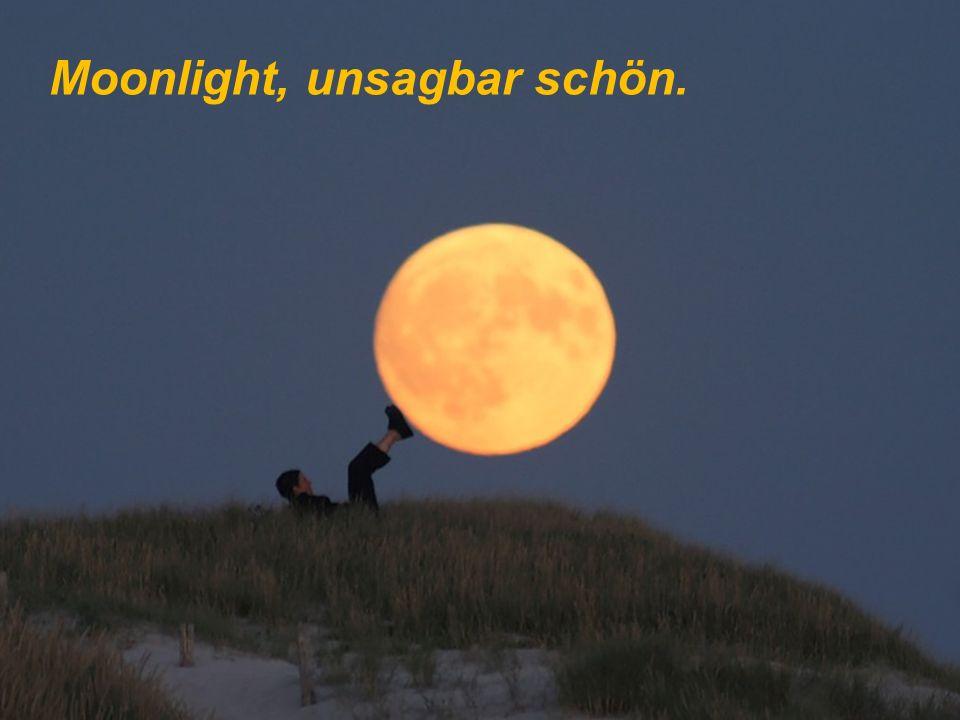 Oooh, Moonlight, die Nacht ist schön,