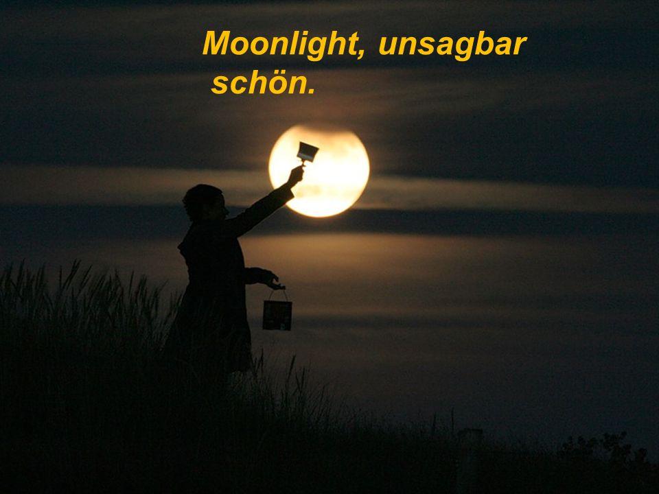 Moonlight, die Nacht ist schön,