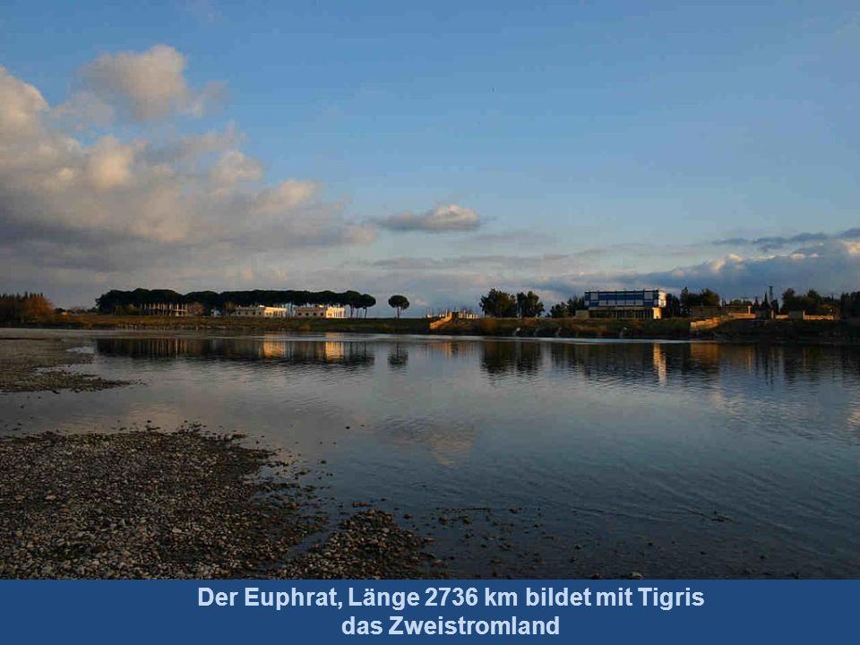 Der Tigris, Länge 1900 km Vereinigung mit Euphrat zum Schatt al-Arab