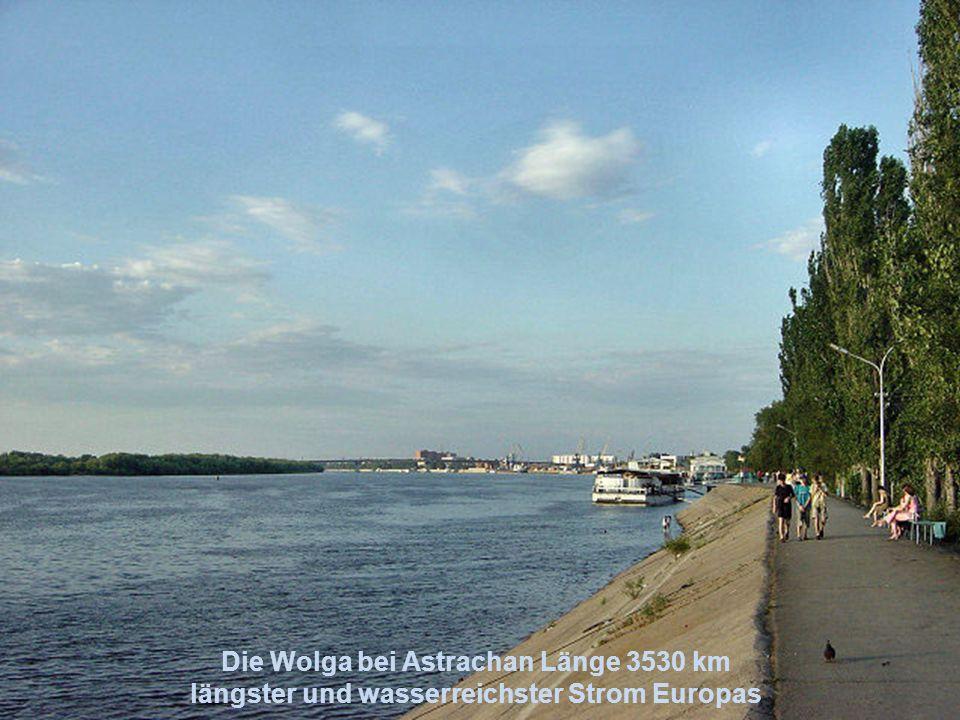 RheinElbe Donau Wolga Dnjepr Don