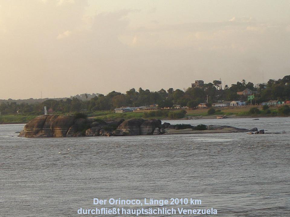 Orinoco Amazonas
