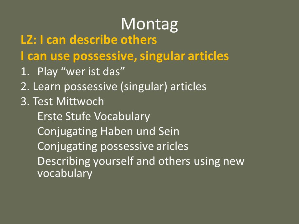 Montag LZ: I can describe others I can use possessive, singular articles 1.Play wer ist das 2. Learn possessive (singular) articles 3. Test Mittwoch E