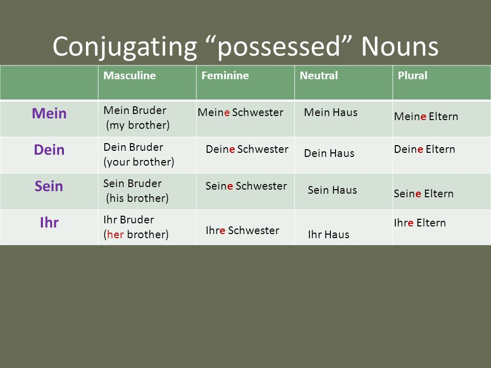Conjugating possessed Nouns MasculineFeminineNeutralPlural Mein Mein Bruder (my brother) Dein Dein Bruder (your brother) Sein Sein Bruder (his brother