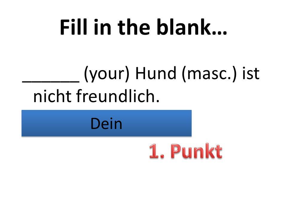 Fill in the blank… ______ (your) Hund (masc.) ist nicht freundlich. Dein