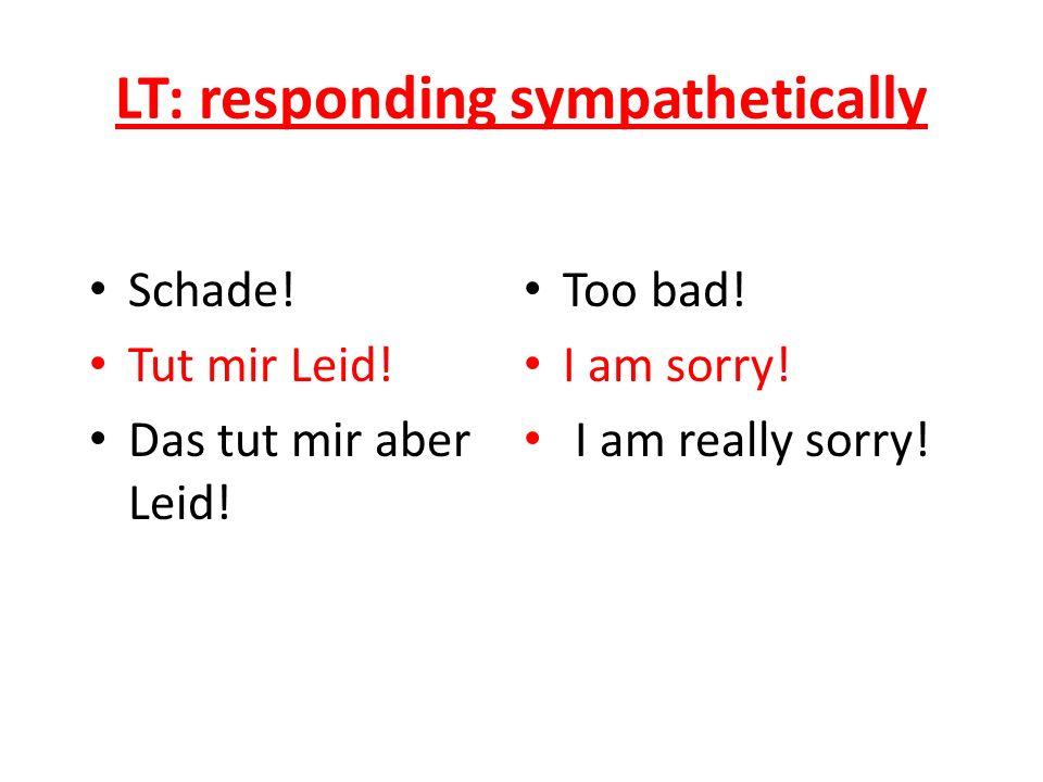 LT: responding sympathetically Schade. Tut mir Leid.