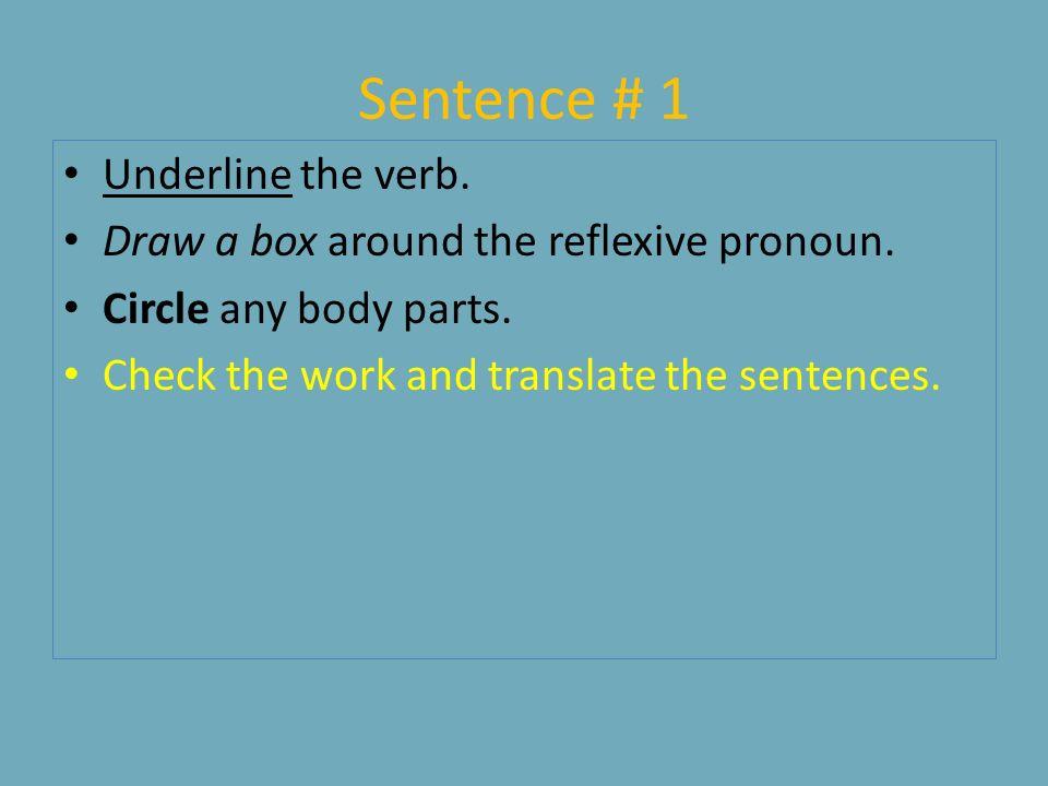 Sentence # 1 Underline the verb.Draw a box around the reflexive pronoun.