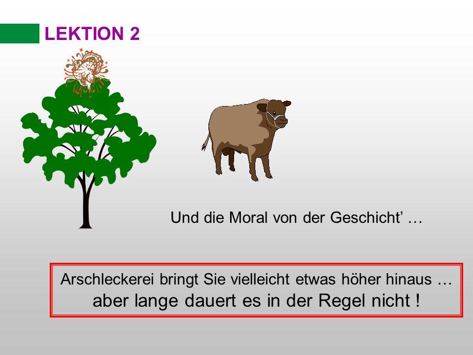 LEKTION 2 Und die Moral von der Geschicht … Arschleckerei bringt Sie vielleicht etwas höher hinaus … aber lange dauert es in der Regel nicht !
