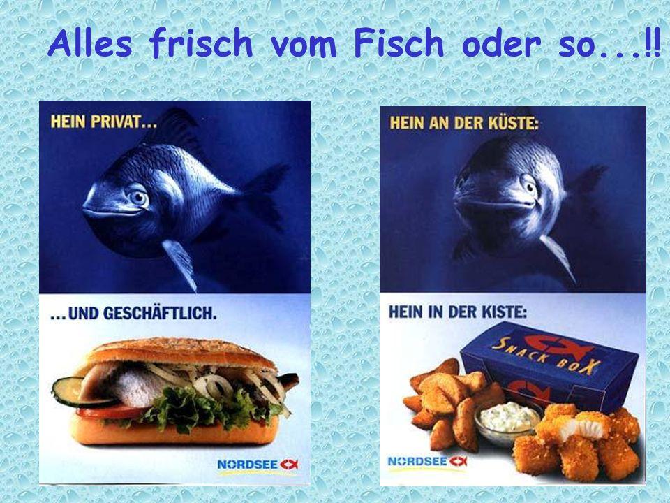 Alles frisch vom Fisch oder so...!!