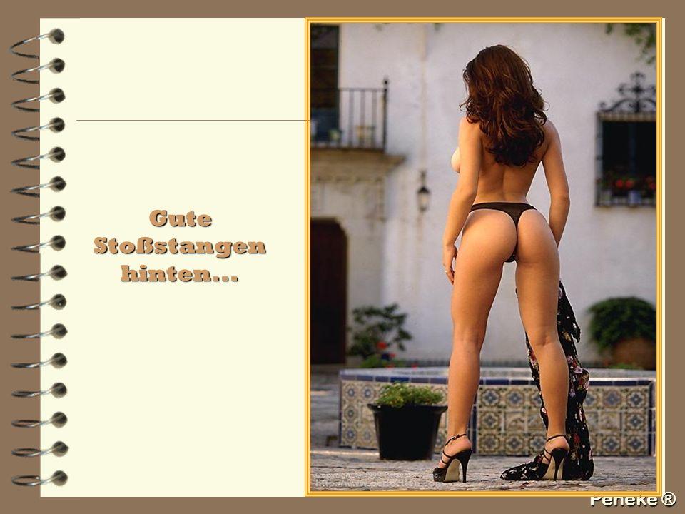 Peneke ® Gute Stoßstangen hinten...