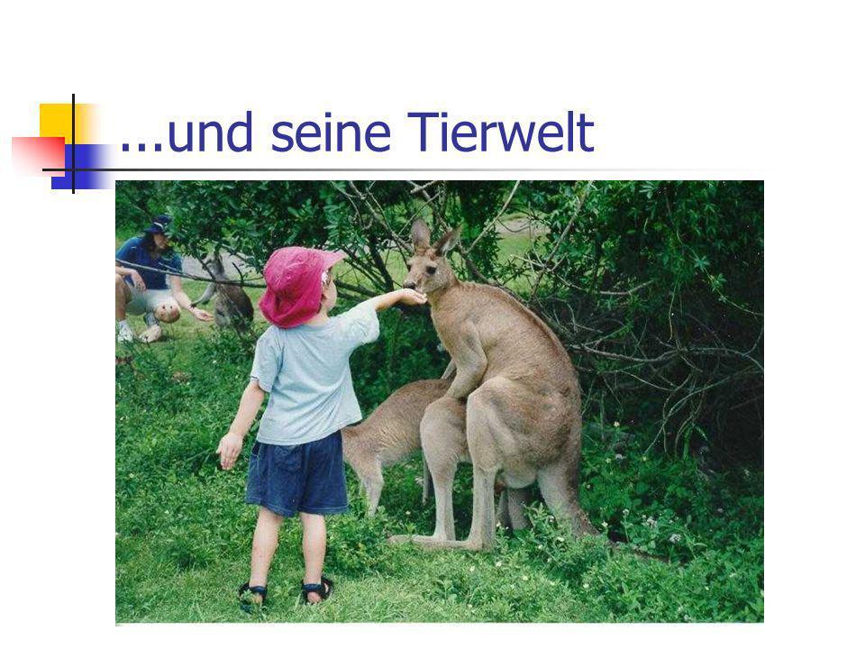 ...und seine Tierwelt
