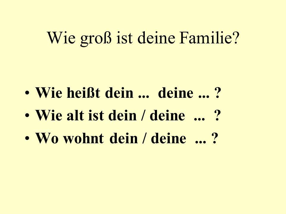 Wie groß ist deine Familie? Wie heißt dein... deine... ? Wie alt ist dein / deine... ? Wo wohnt dein / deine... ?
