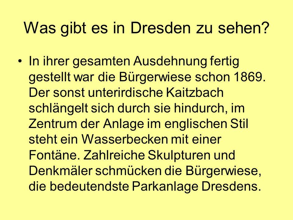 Was gibt es in Dresden zu sehen? In ihrer gesamten Ausdehnung fertig gestellt war die Bürgerwiese schon 1869. Der sonst unterirdische Kaitzbach schlän