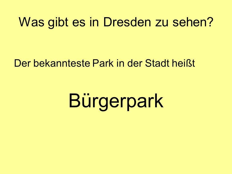 Was gibt es in Dresden zu sehen? Der bekannteste Park in der Stadt heißt Bürgerpark