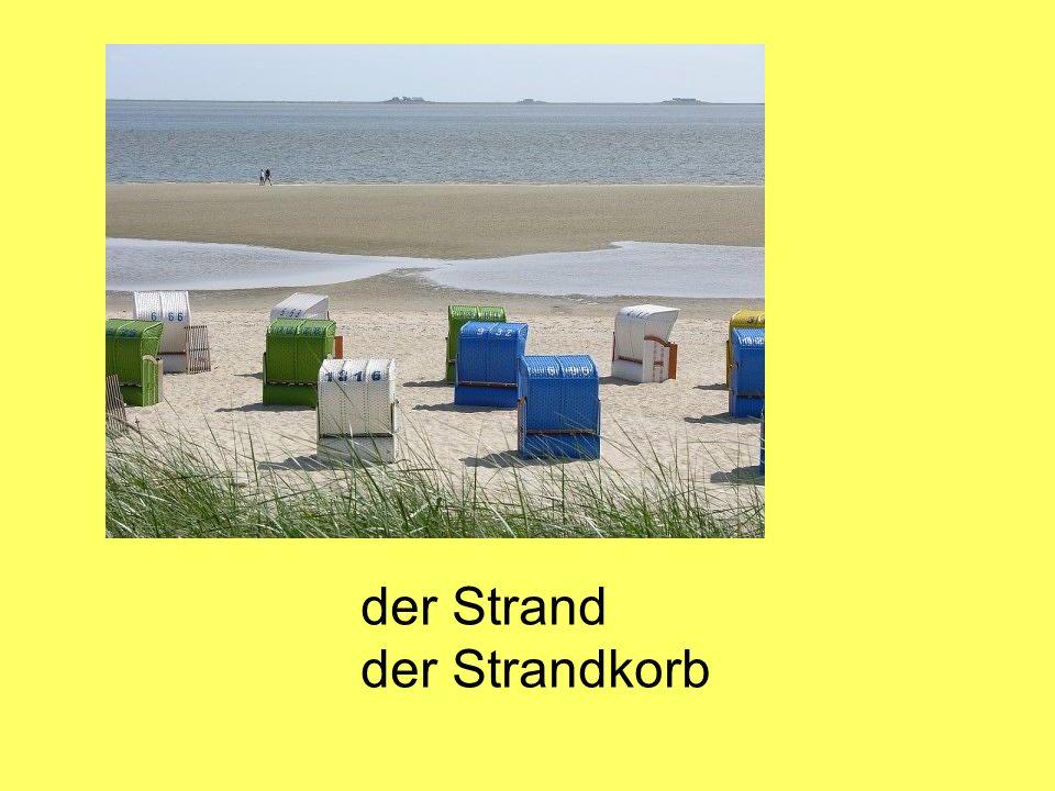 der Strand der Strandkorb