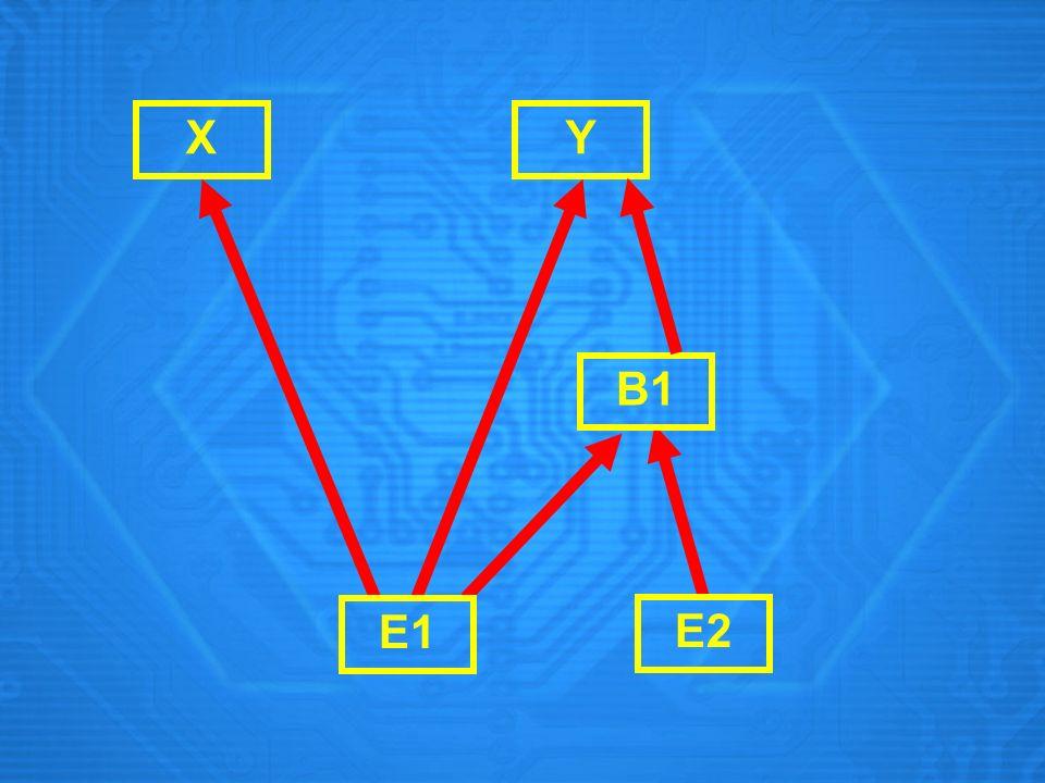 X E1 E2 B1 Y