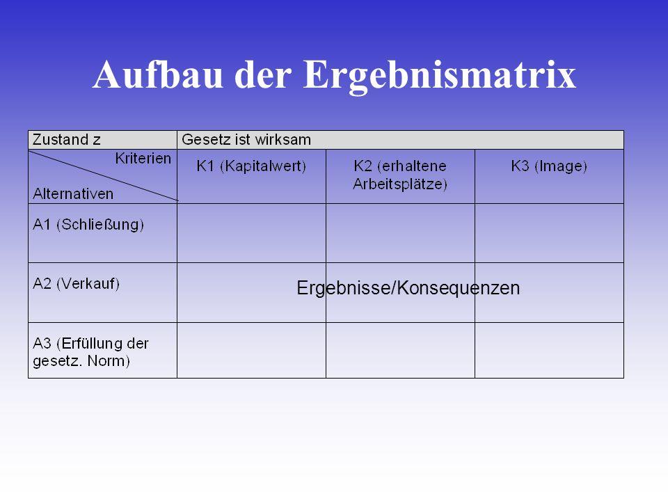 Ergebnisse/Konsequenzen Aufbau der Ergebnismatrix