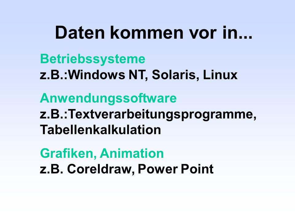 Daten kommen vor in... Betriebssysteme z.B.:Windows NT, Solaris, Linux Anwendungssoftware z.B.:Textverarbeitungsprogramme, Tabellenkalkulation Grafike