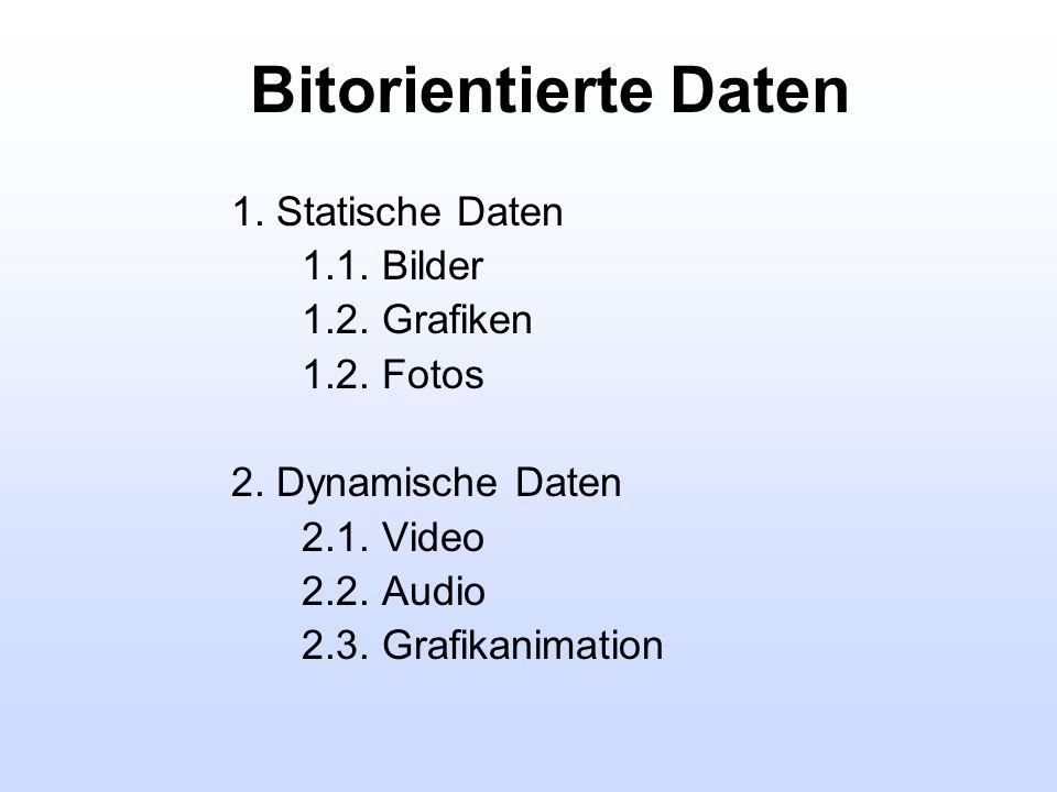 Bitorientierte Daten 1. Statische Daten 1.1. Bilder 1.2. Grafiken 1.2. Fotos 2. Dynamische Daten 2.1. Video 2.2. Audio 2.3. Grafikanimation