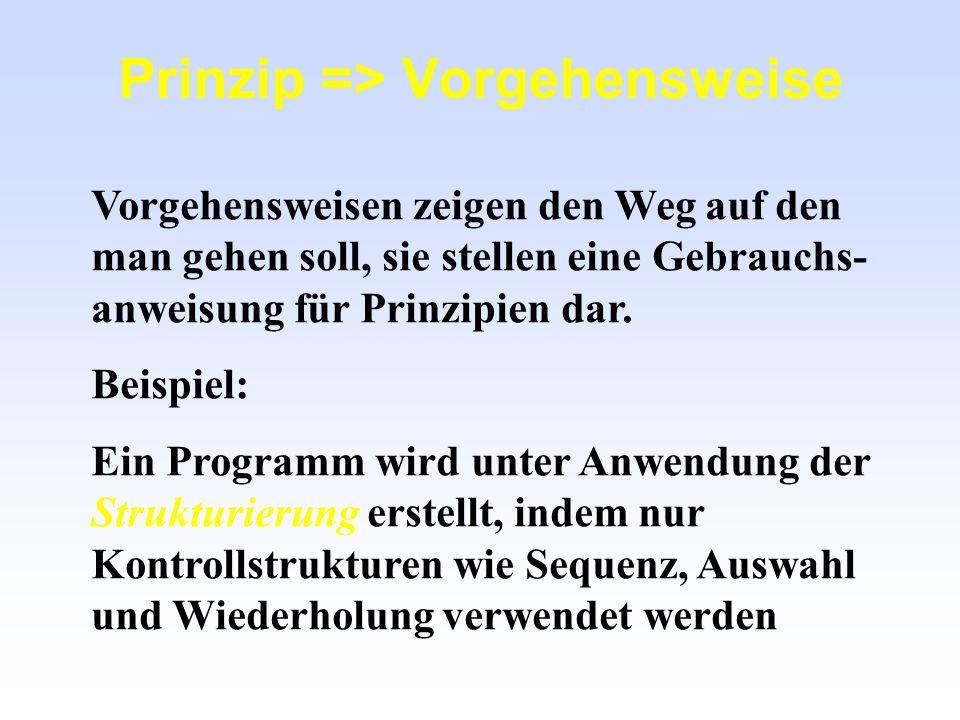 Prinzip => Vorgehensweise Vorgehensweisen zeigen den Weg auf den man gehen soll, sie stellen eine Gebrauchs- anweisung für Prinzipien dar. Beispiel: E