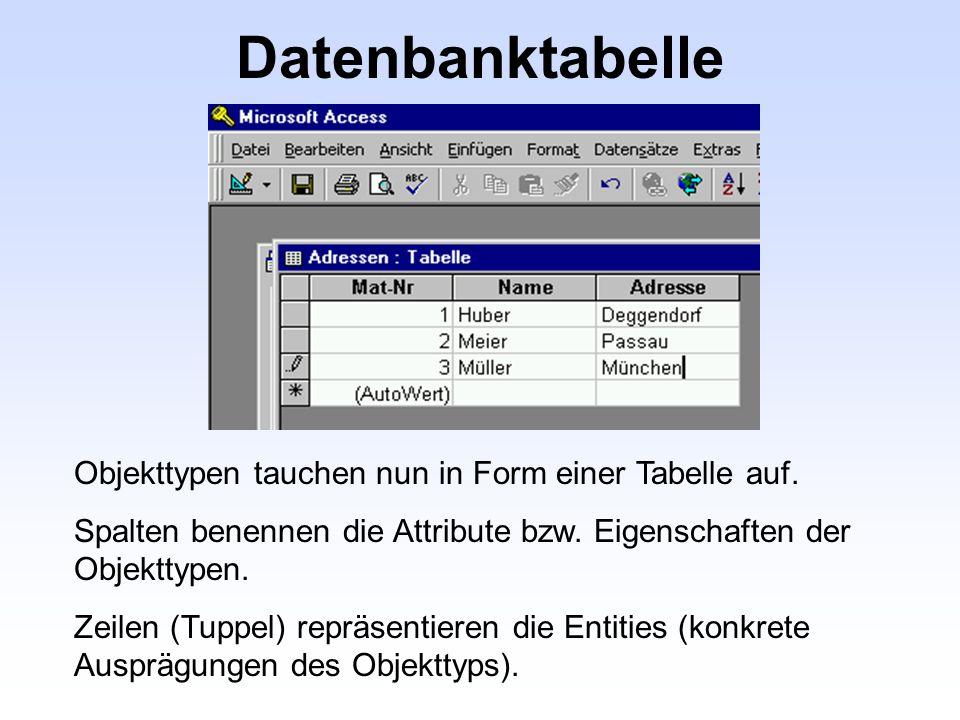 Datenbanktabelle Objekttypen tauchen nun in Form einer Tabelle auf. Spalten benennen die Attribute bzw. Eigenschaften der Objekttypen. Zeilen (Tuppel)