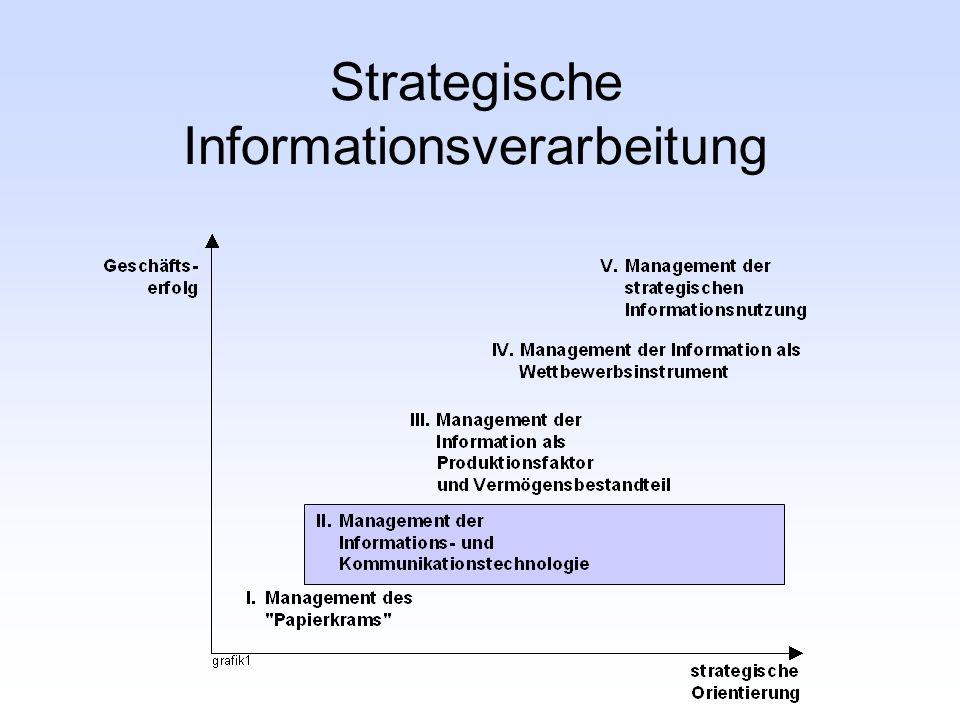 Strategische Informationsverarbeitung