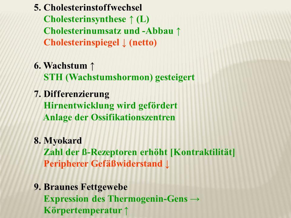 5. Cholesterinstoffwechsel Cholesterinsynthese (L) Cholesterinumsatz und -Abbau Cholesterinspiegel (netto) 6. Wachstum STH (Wachstumshormon) gesteiger