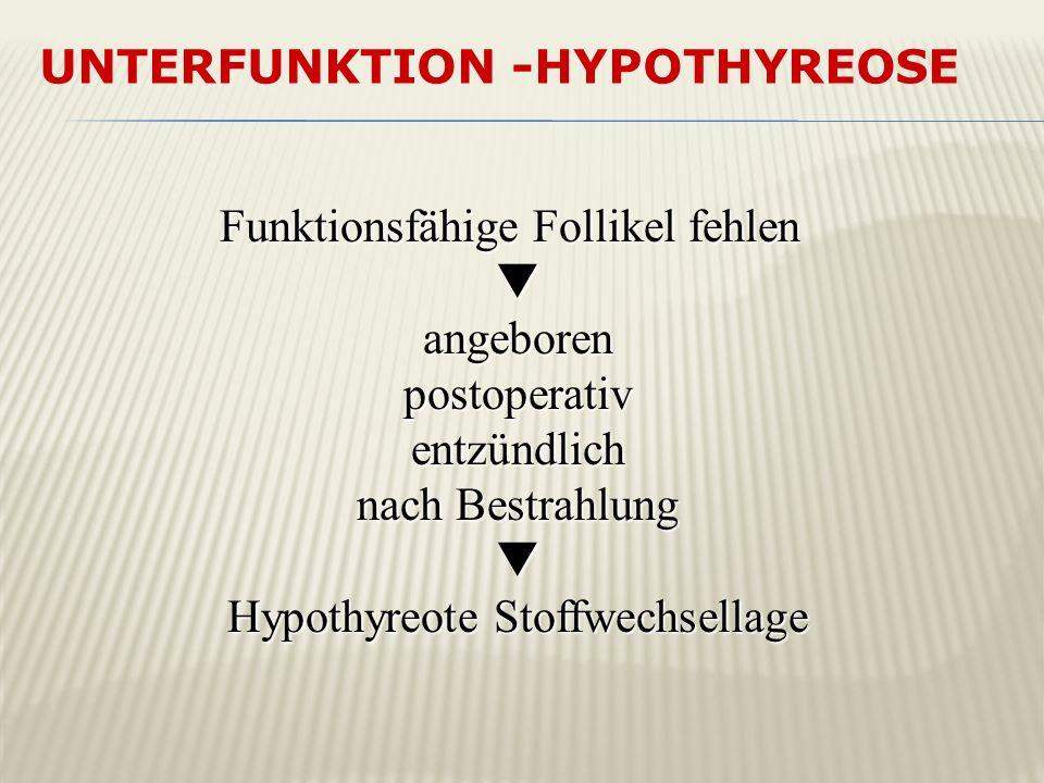 UNTERFUNKTION -HYPOTHYREOSE Funktionsfähige Follikel fehlen angeborenpostoperativentzündlich nach Bestrahlung Hypothyreote Stoffwechsellage