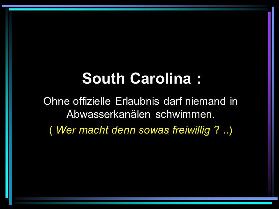 South Carolina : Ohne offizielle Erlaubnis darf niemand in Abwasserkanälen schwimmen.