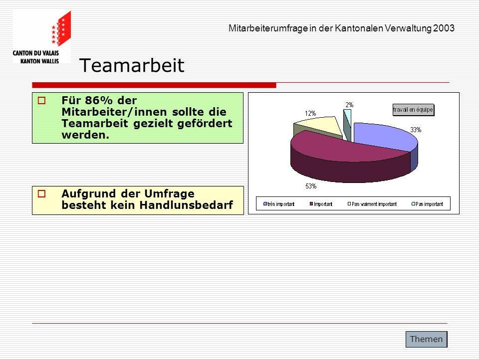 Mitarbeiterumfrage in der Kantonalen Verwaltung 2003 Teamarbeit Für 86% der Mitarbeiter/innen sollte die Teamarbeit gezielt gefördert werden. Themen A