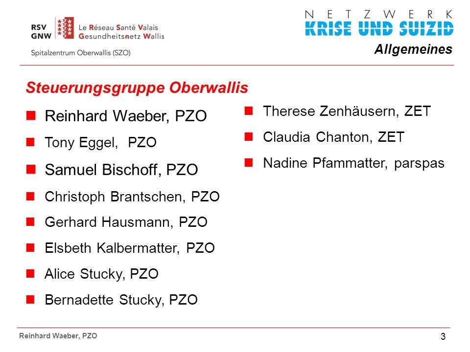 Allgemeines Reinhard Waeber, PZO 14 Interventionsprogramm im Oberwallis: Sensibilisierung:Am 27.