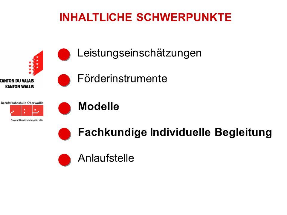 Leistungseinschätzungen Förderinstrumente Modelle INHALTLICHE SCHWERPUNKTE Anlaufstelle Fachkundige Individuelle Begleitung